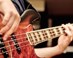 Permalink to: Bass Lessons Sunshine Coast